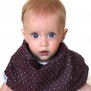 Burgundy Chambray Dots